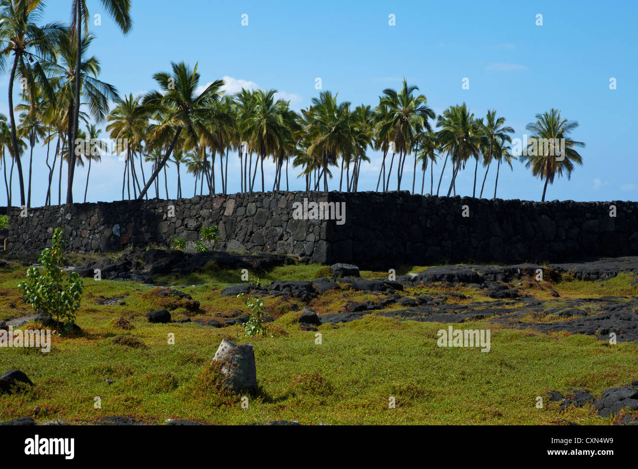 A heiau is a Hawaiian temple to treat the sick, offer first fruits, first catch, start rain, stop rain... - Stock Image