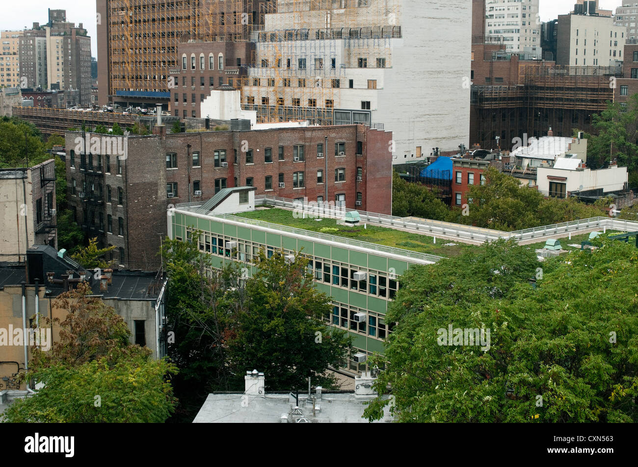 Greenwich VIllage cityscape with the new greenroof atop P.S. 41 - Stock Image
