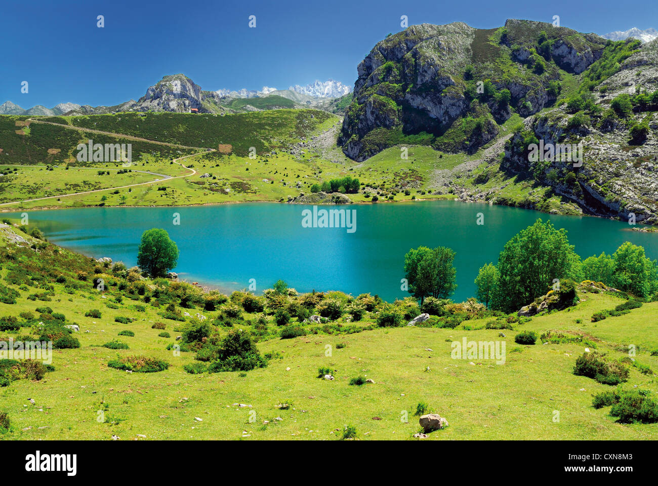 Spain, Asturias: Mountain panorama at Lake Enol in the National Park Picos de Europa - Stock Image