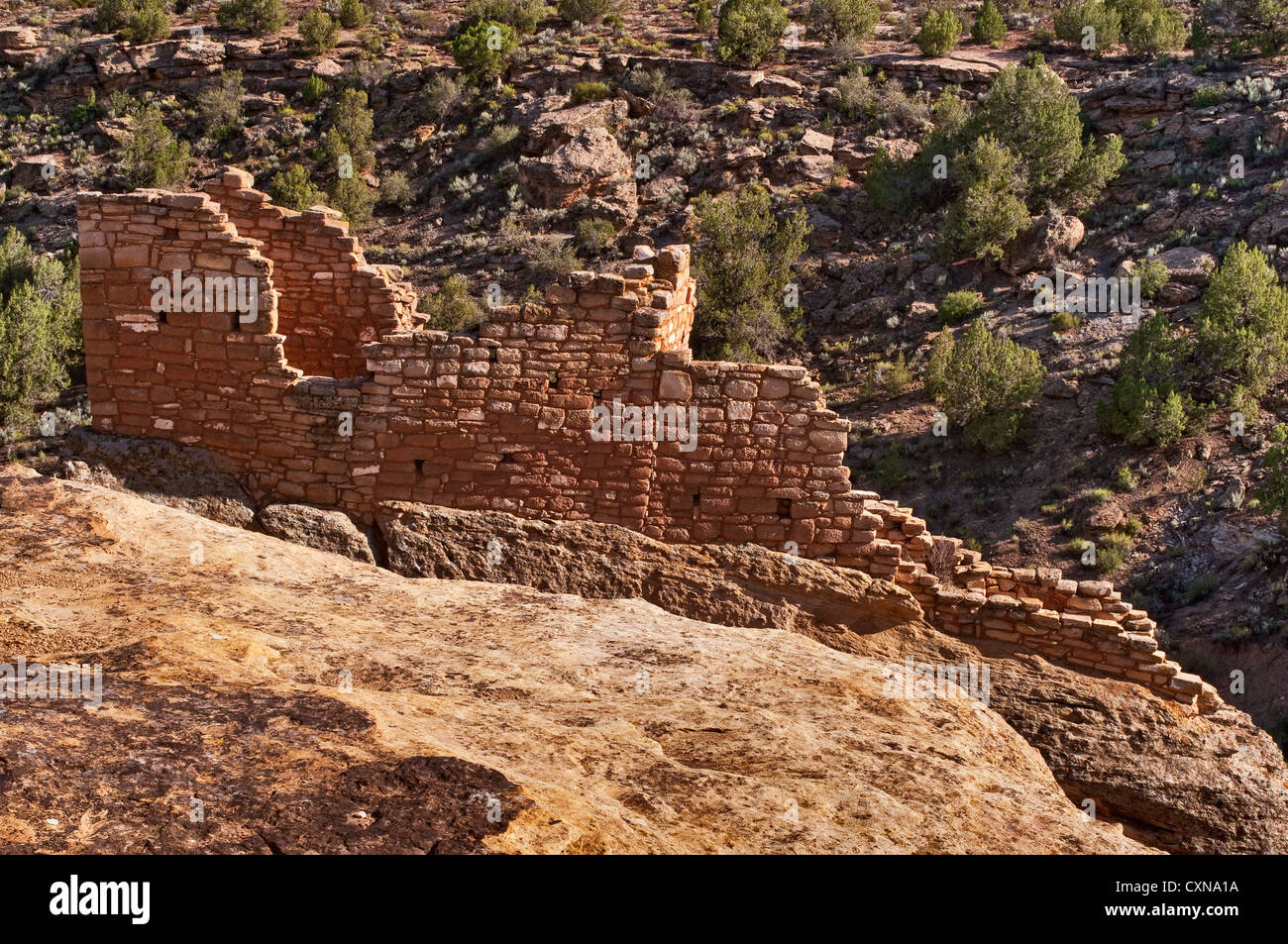 Stronghold House ruin at Hovenweep National Monument, Colorado Plateau, Utah, USA - Stock Image