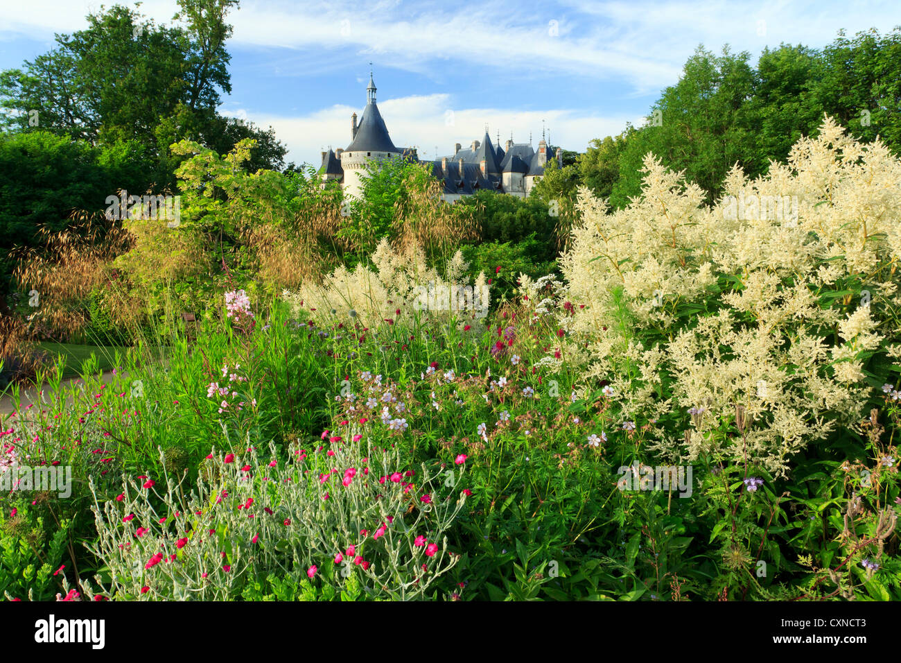 Clumps of perennials and roofs of the castle in the International Festival of Gardens of Chaumont-sur-loire 2012. - Stock Image