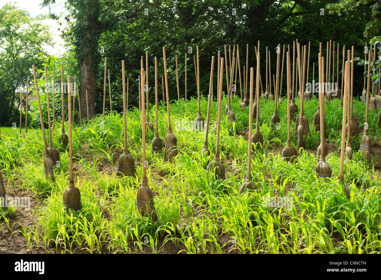 International Festival of Gardens of Chaumont-sur-loire 2012, grass and brooms by Michel Blazy. - Stock Image