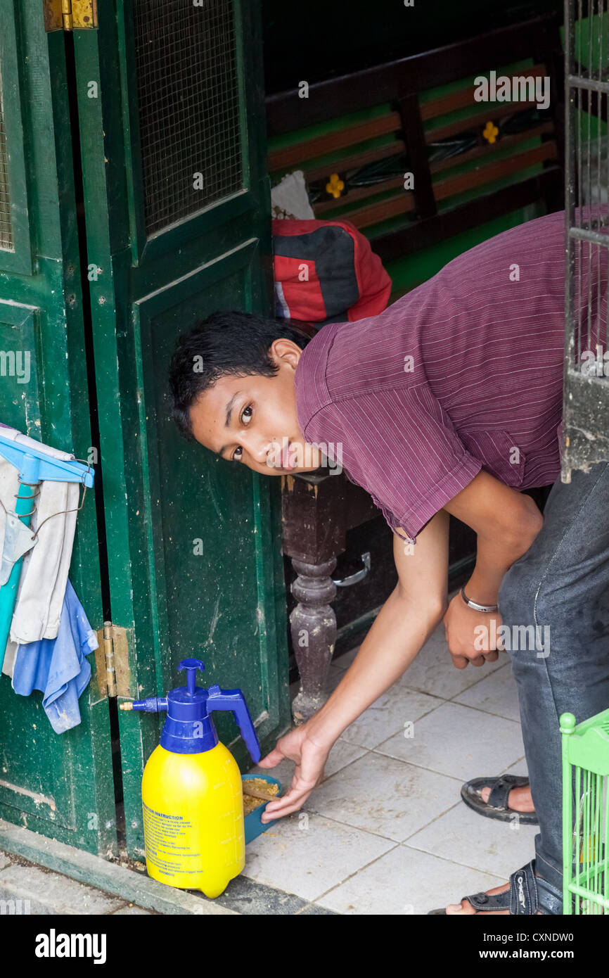Woman bending over in Yogyakarta Stock Photo