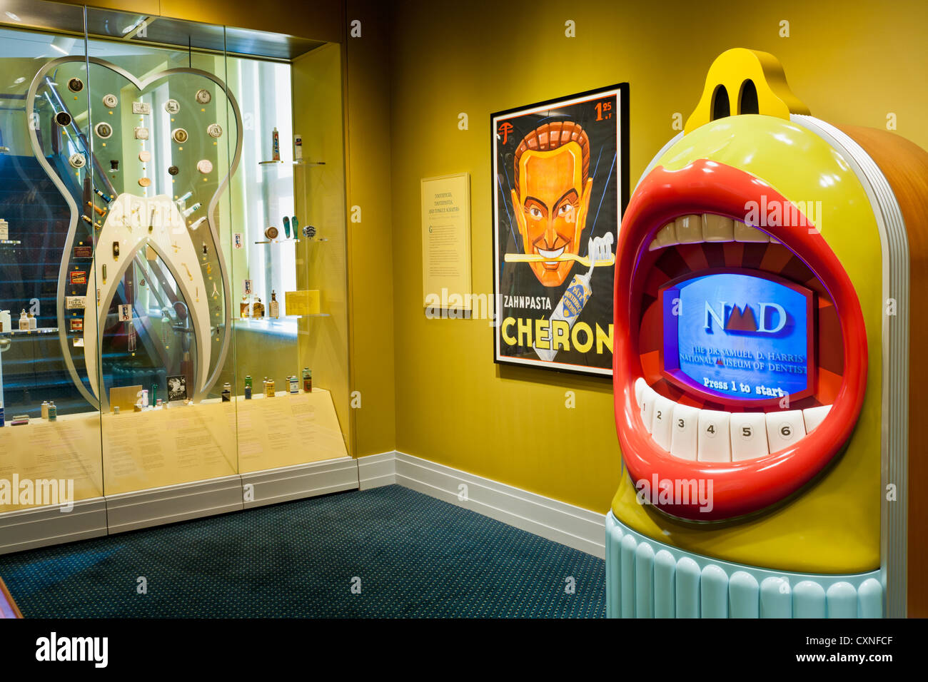 The Dr. Samuel D. Harris National Museum of Dentistry, Baltimore, Maryland - Stock Image