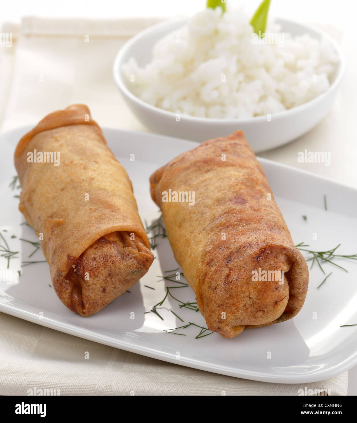 Fried Chicken Rolls And Rice - Stock Image