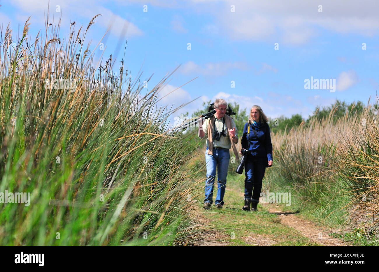 Two keen birdwatchers walking  along a pathway in the mashes of inner 'Sanctuary'the heart of the Marais - Stock Image