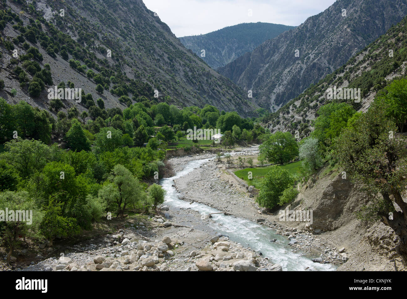 Looking up the Rumbur Valley, Chitral, Khyber-Pakhtunkhwa, Pakistan - Stock Image