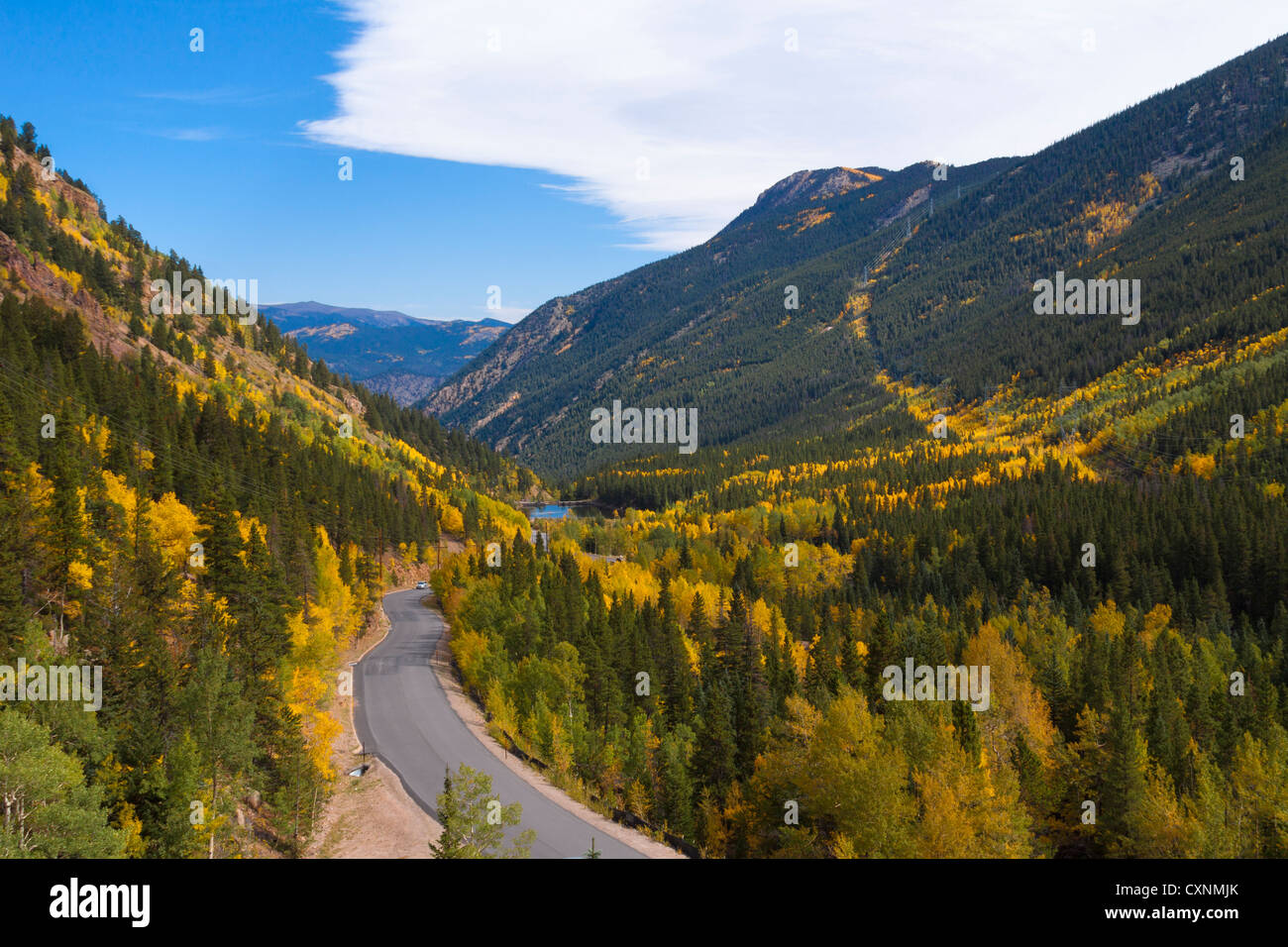 The Colorful Aspens on Guanella Pass just outside of Georgetown Colorado USA - Stock Image