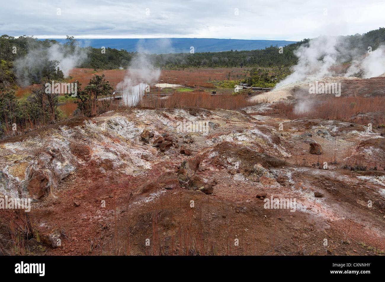 Elk284-2269 Hawaii, Big Island, Volcanoes National Park, Sulphur Banks - Stock Image