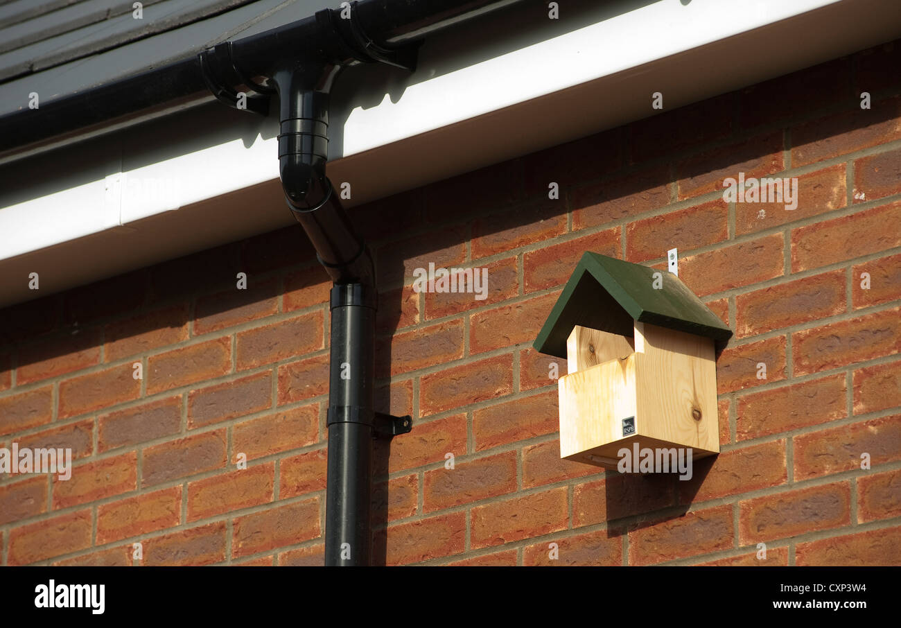 RSPB bird nesting box fixed high up to the outside of a house. - Stock Image
