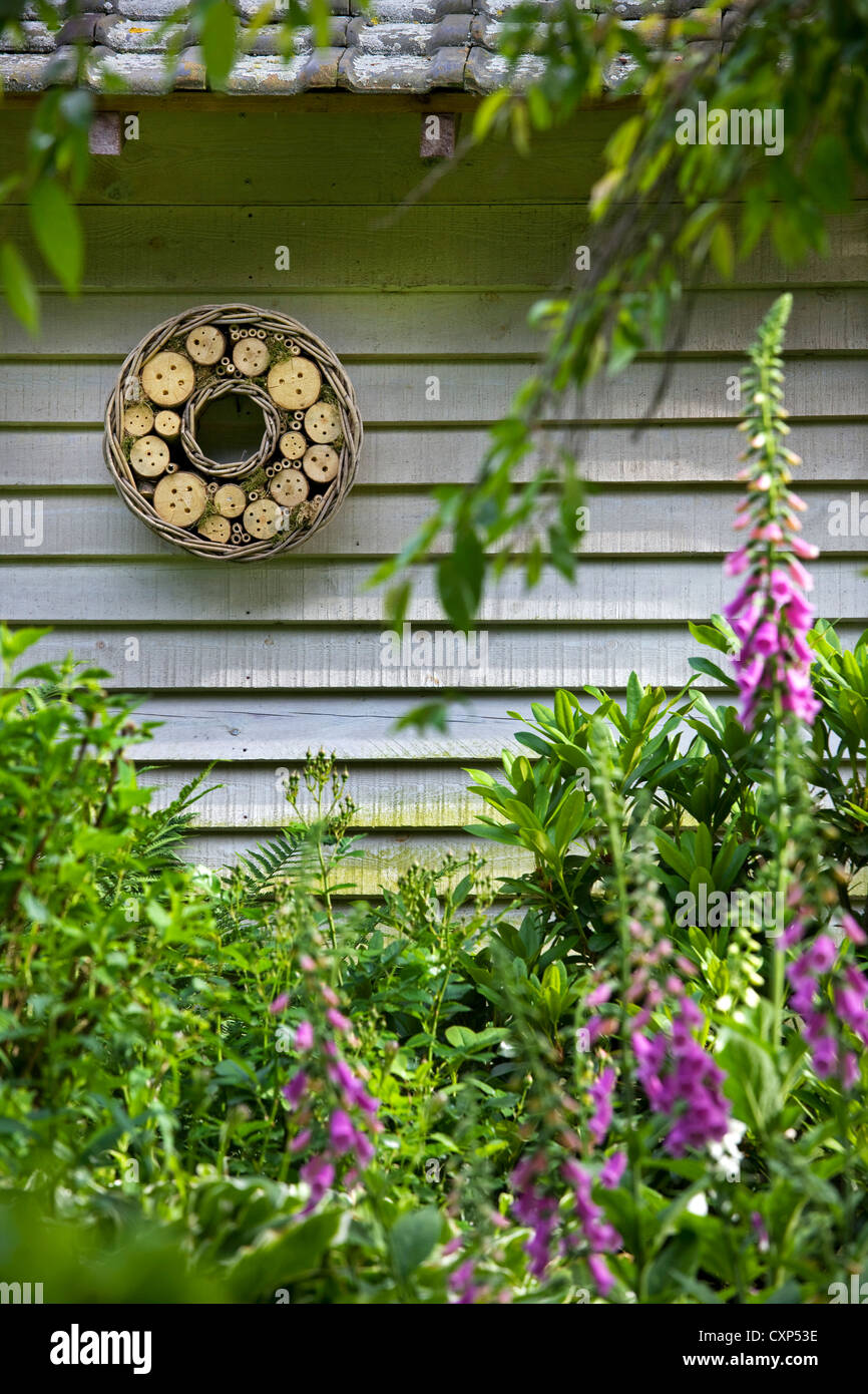 Insect hotel for solitary bees and wasps hanging from garden house, Belgium - Stock Image