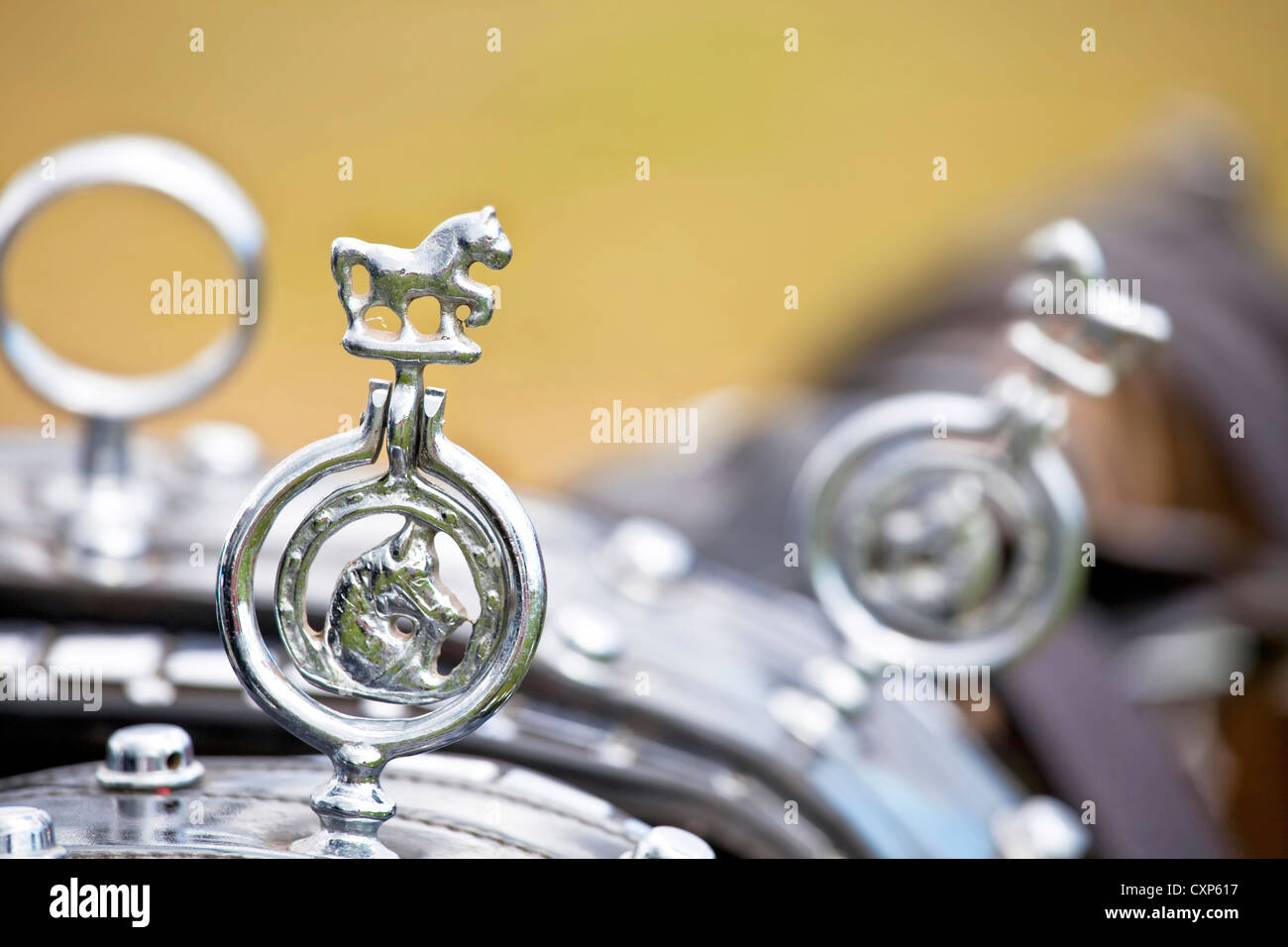 Close up of the detail of a traditional set of harness for draft horses. - Stock Image