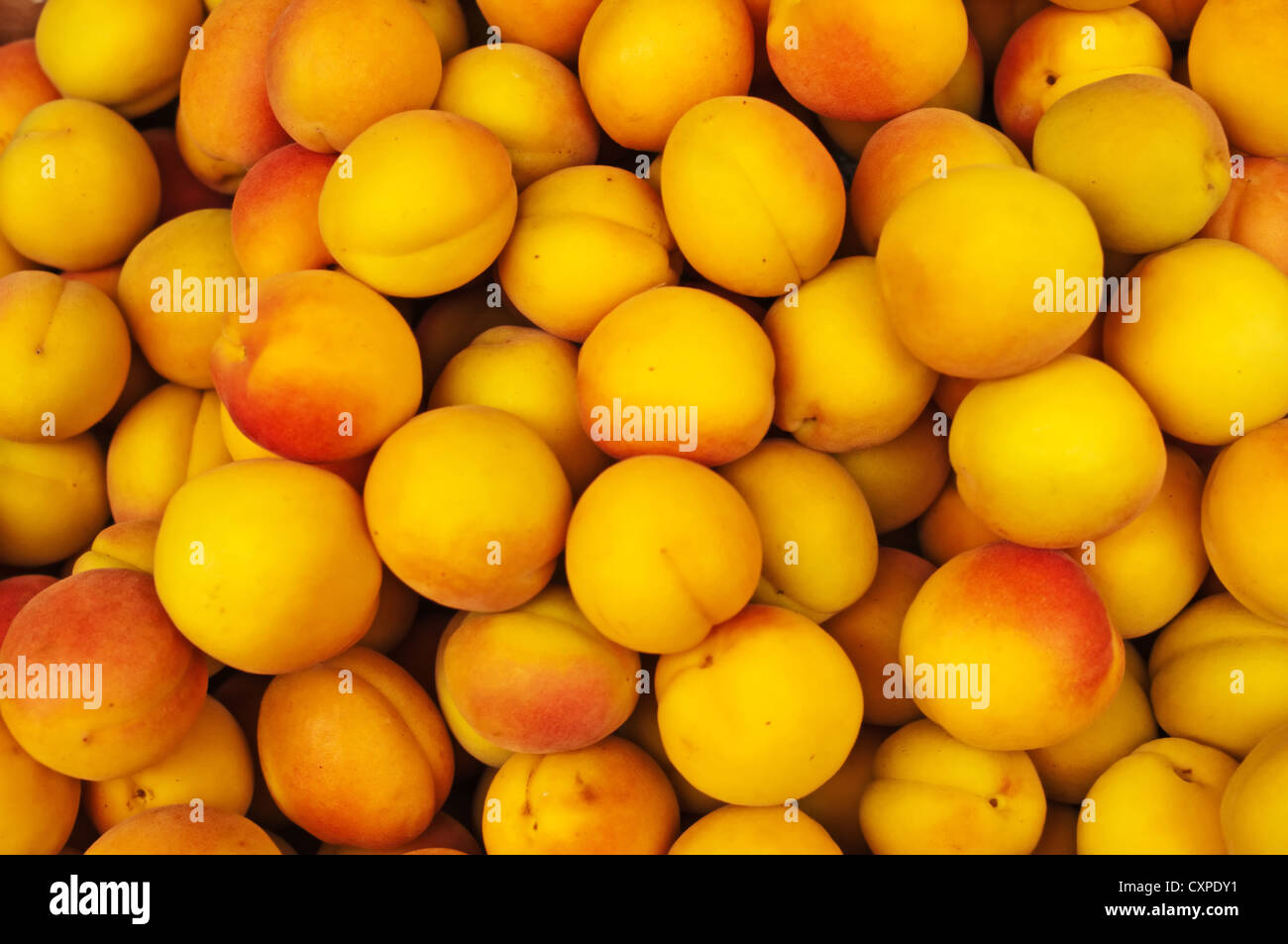 apricot at a street sale - Stock Image