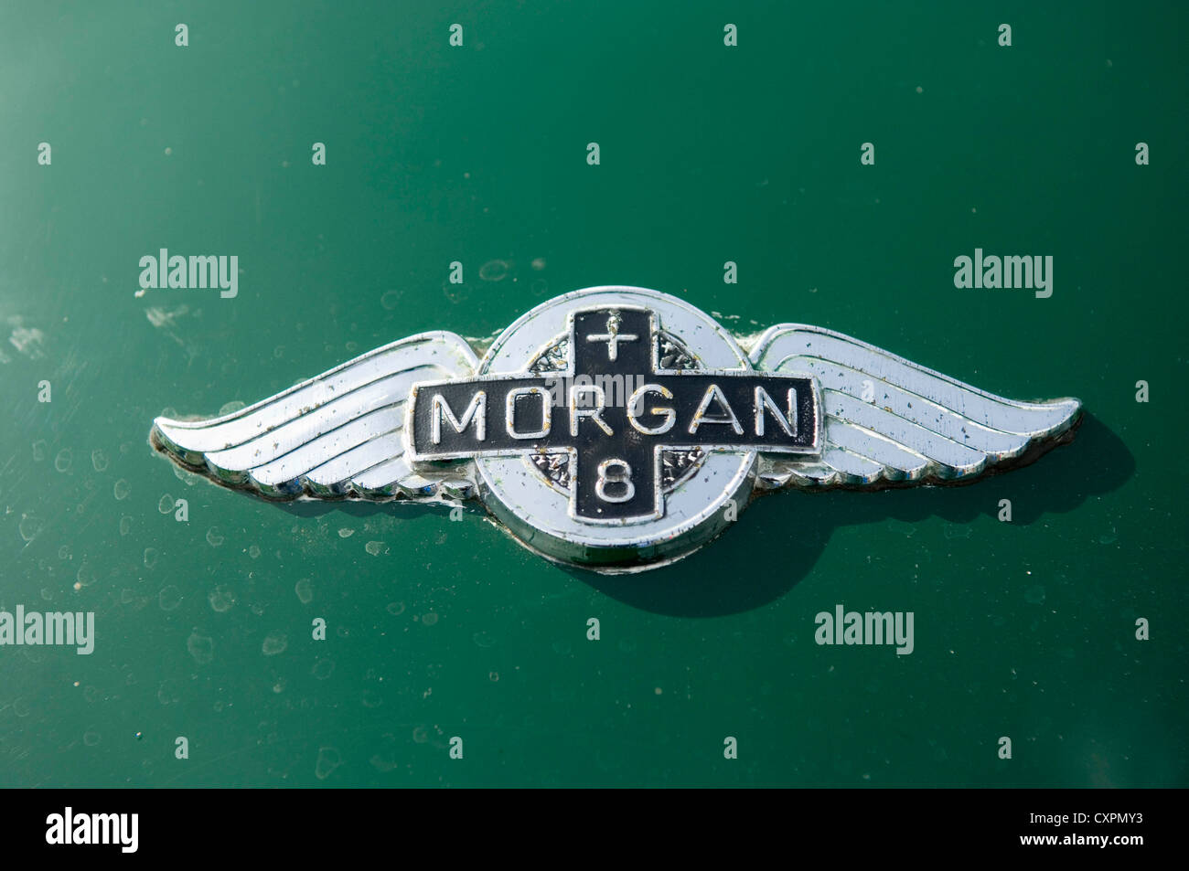 Sign On Bonnet Of An Old Morgan Plus Eight Sports Car Stock Photo