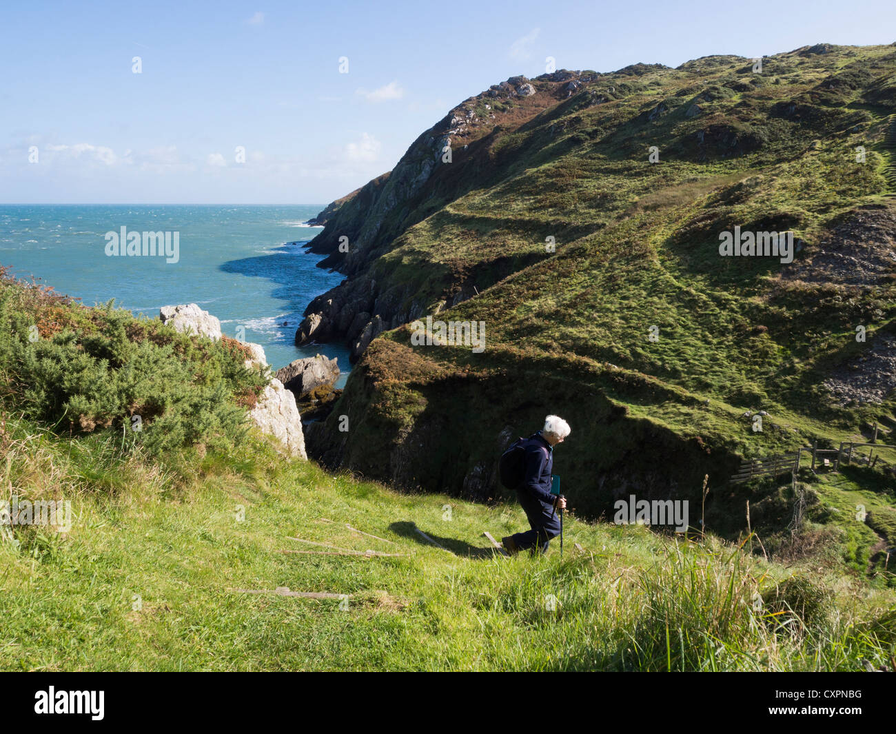 Person walking down steep stepped section of Isle of Anglesey Coastal Path with view of rugged coastline at Hell's - Stock Image