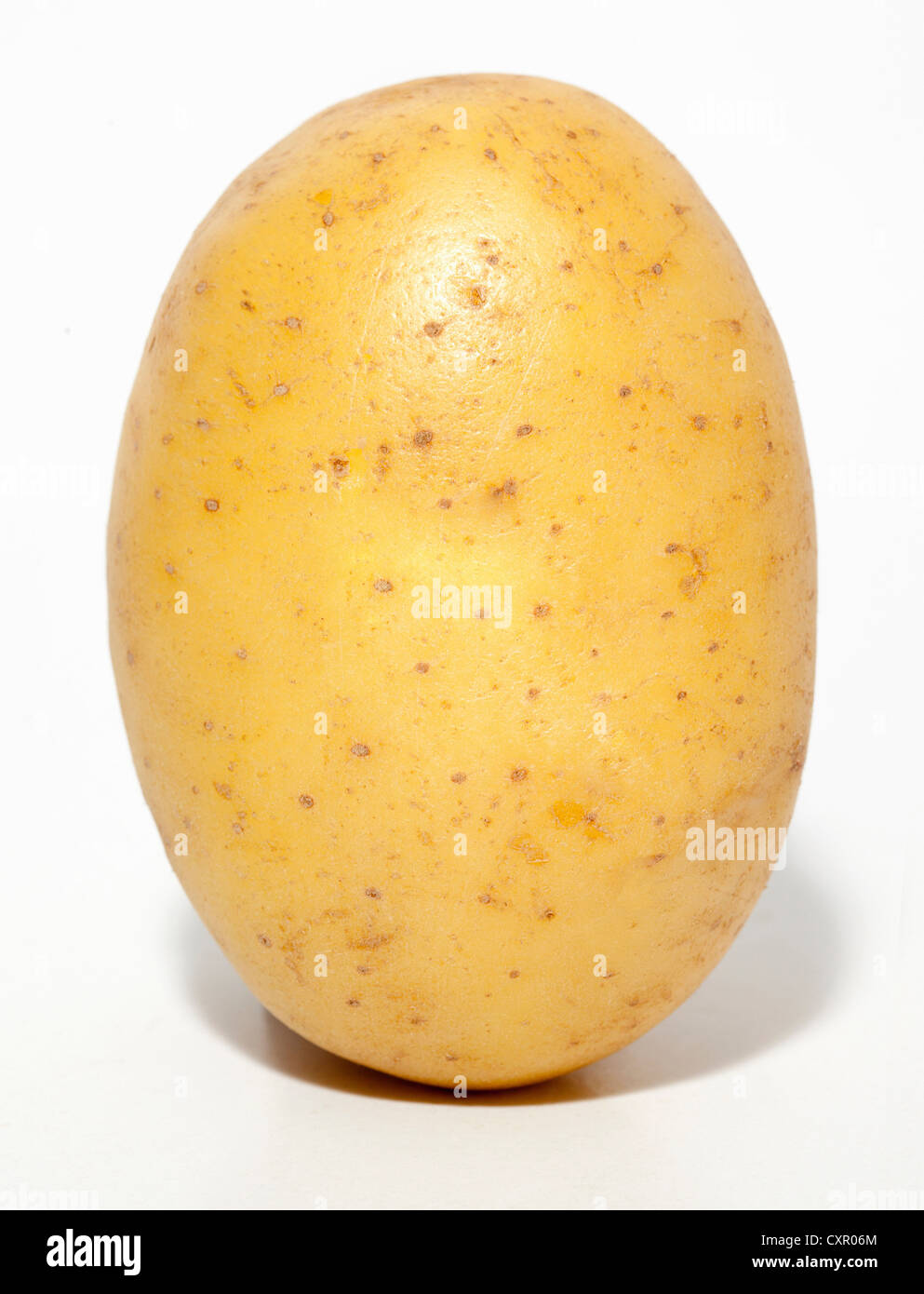 Raw potato Stock Photo