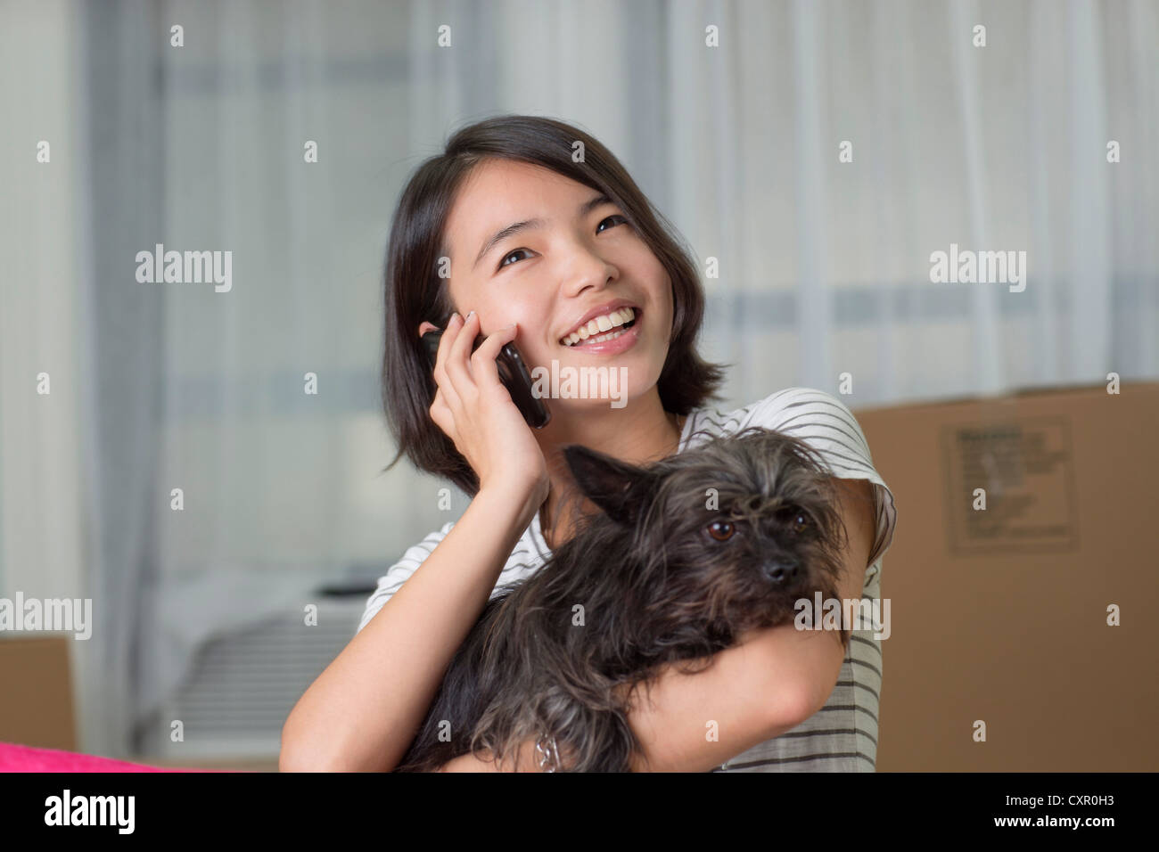 Young woman on cellphone with pet dog - Stock Image