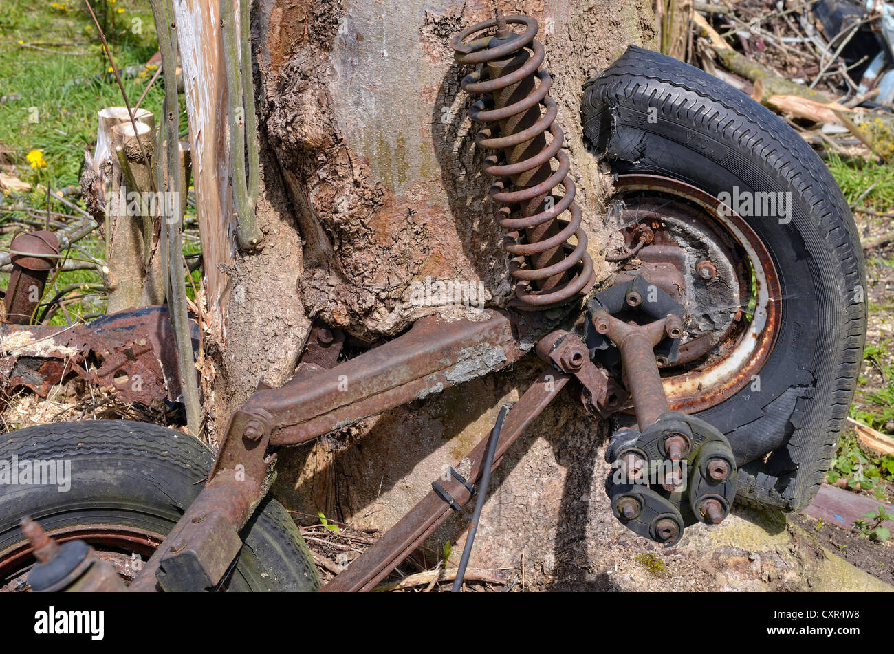 Nature and technology, car axle and wheels, partially overgrown by a willow tree trunk, Miesbach, Upper Bavaria, - Stock Image