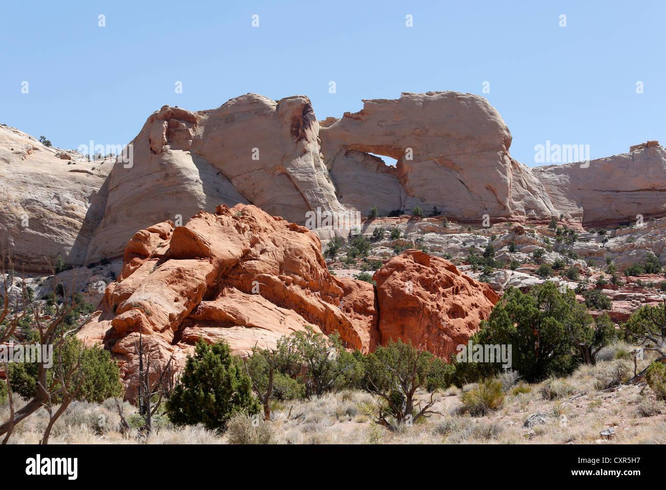 Peekaboo Arch, Upper Muley Twist Canyon, Waterpocket Fold district, Capitol Reef National Park, Utah, USA - Stock Image