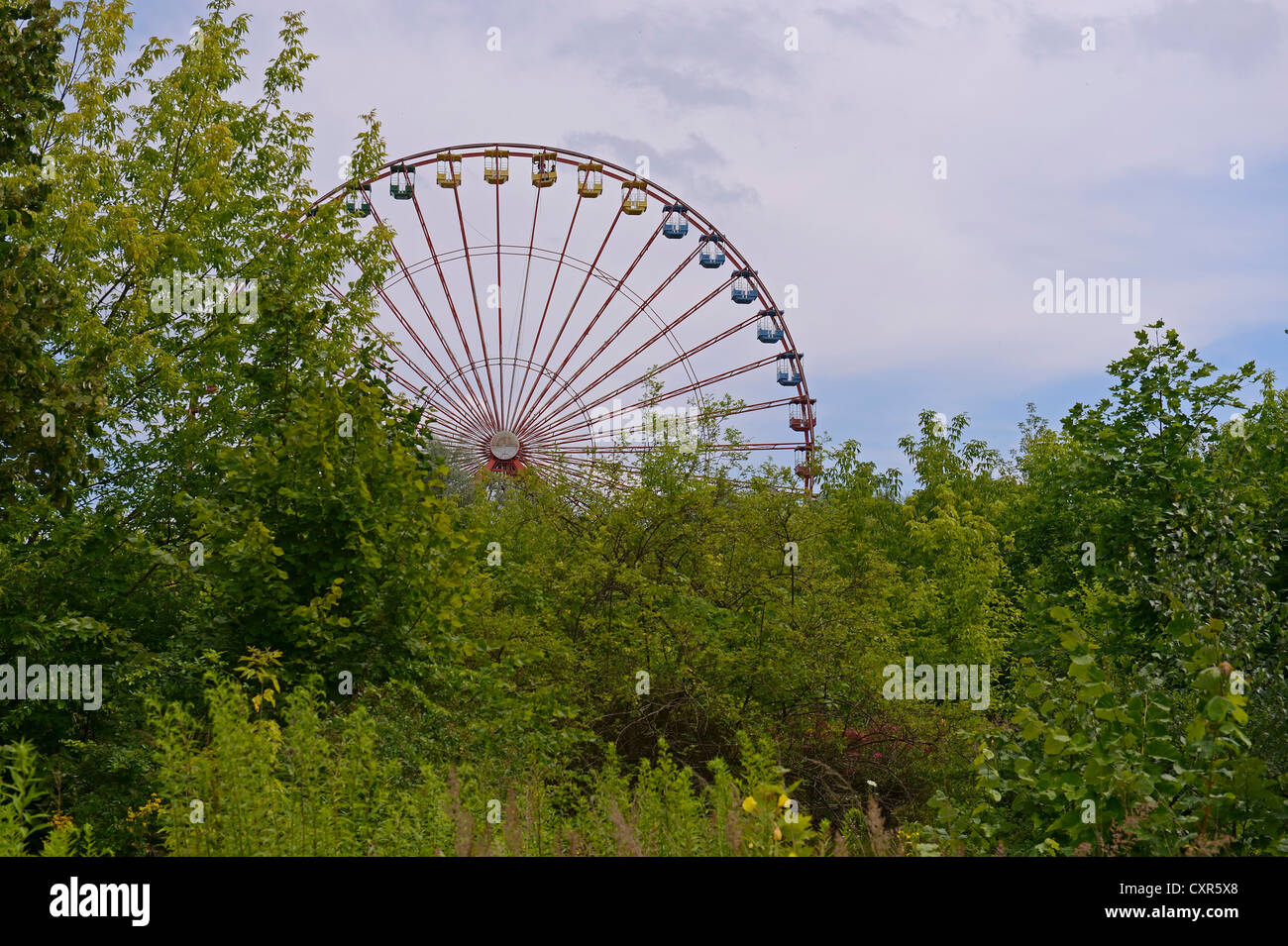 Concealed view of the 45-meter-high Ferris wheel in the former Spreepark Berlin amusement park, formerly known as - Stock Image