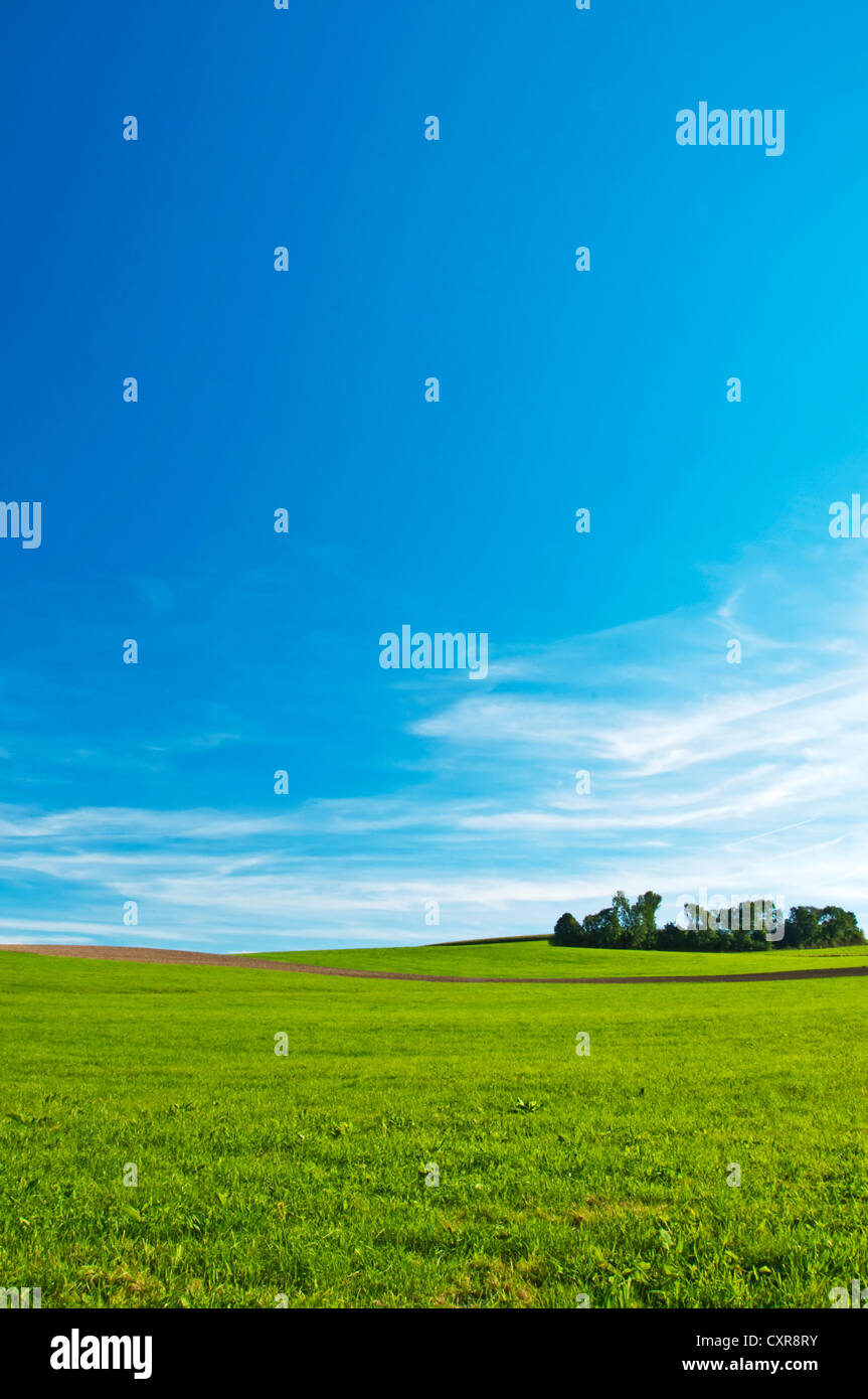 green with small hills - Stock Image