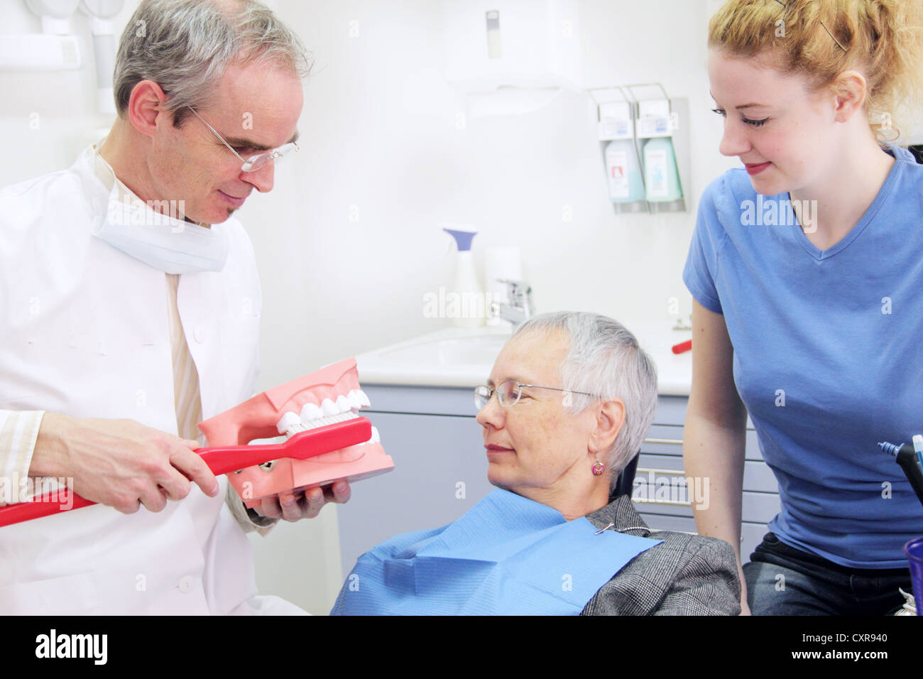 Precaution, dentist explaining dental care to a patient with a model - Stock Image