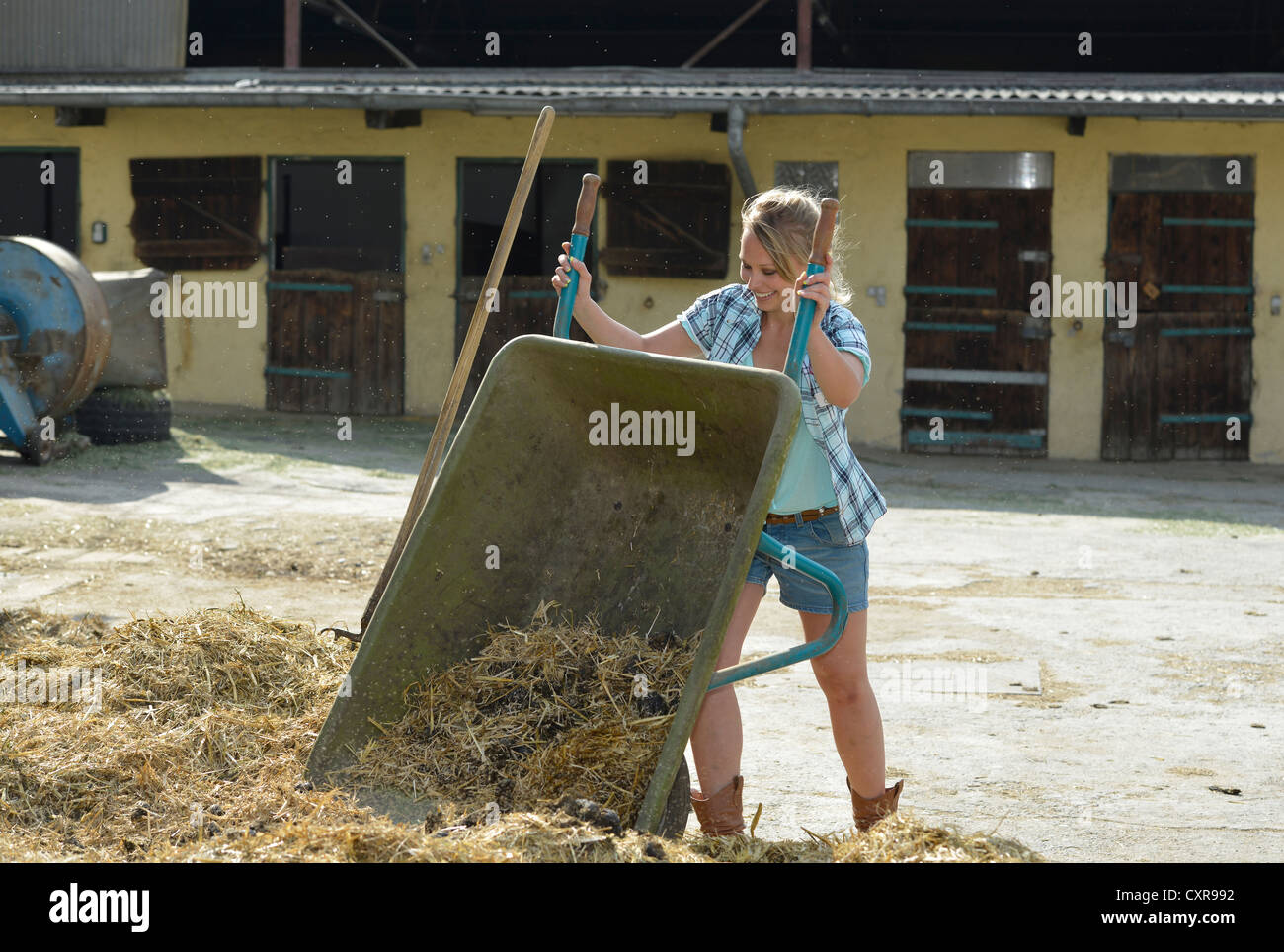 Young female farmer, horse manure, cleaning out, push cart, wheelbarrow, Gingen, Baden-Wuerttemberg, Germany, Europe Stock Photo