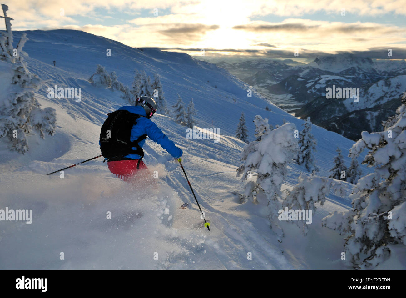 Skier downhill skiing on Steinplatte mountain, Reit im Winkl, Chiemgau, Bavaria, Germany, Europe - Stock Image