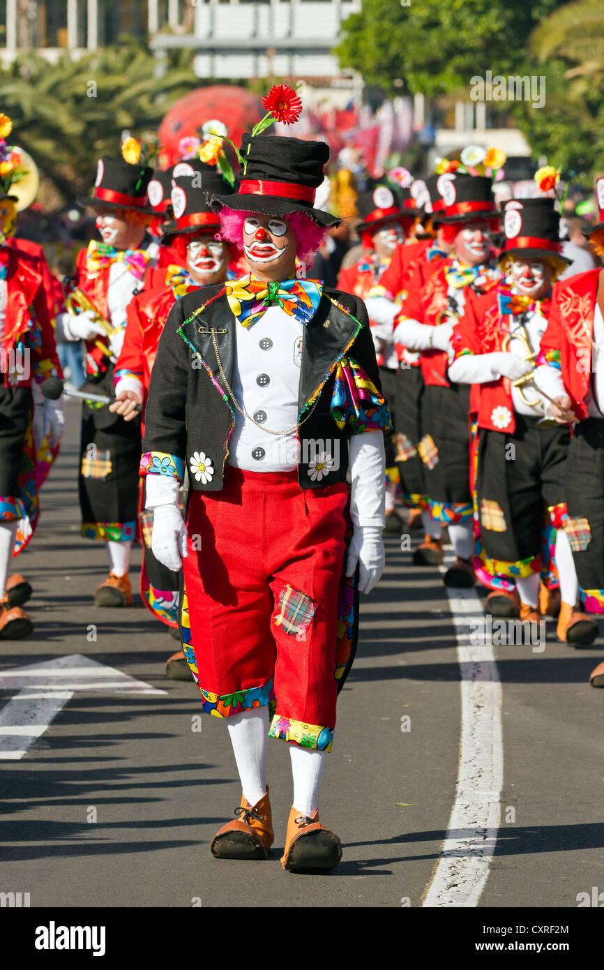 Street carnival in Santa Cruz, the capital of Tenerife, Canary Islands, Spain, Europe - Stock Image