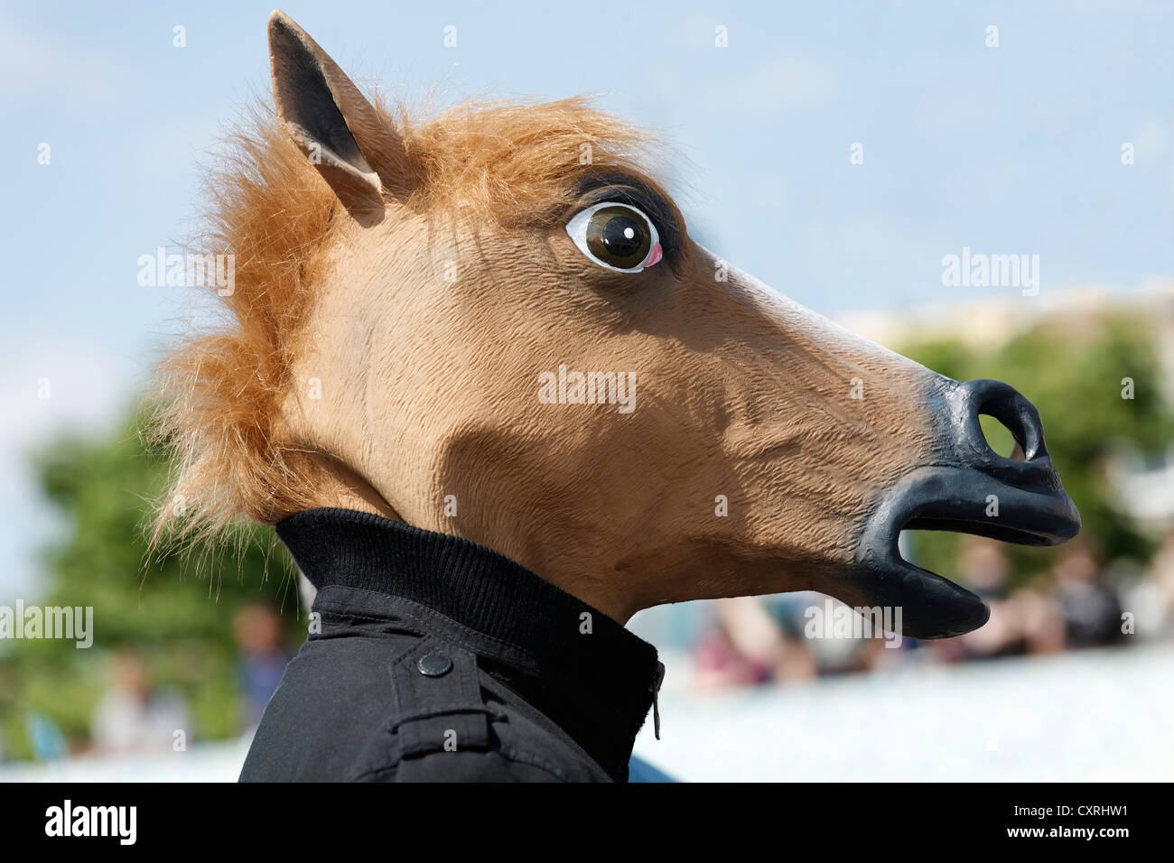Horse Mask High Resolution Stock Photography And Images Alamy