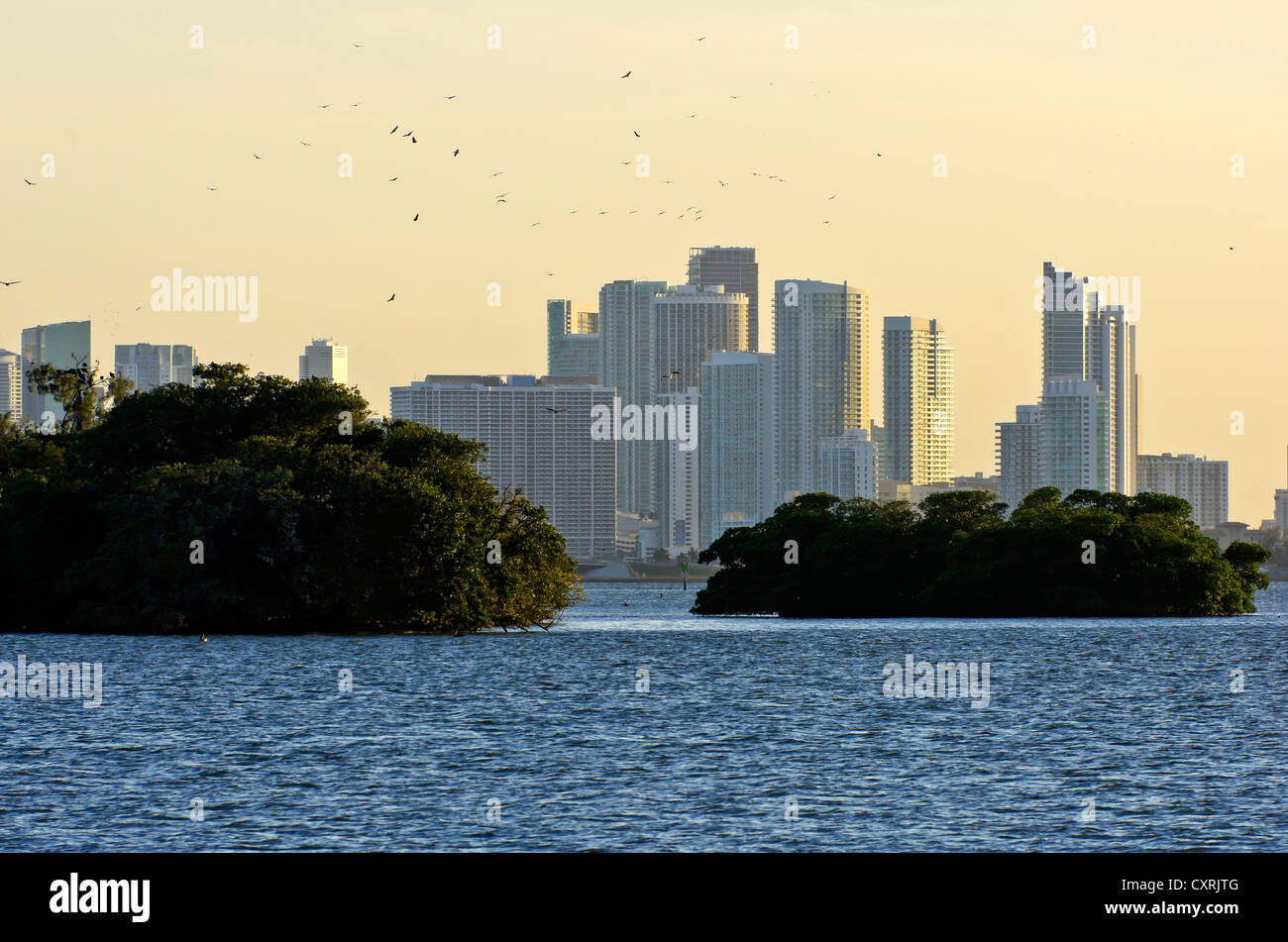 Housing complex at Mount Sinai Medical Center with small islands in the foreground, seen from Morningside Park, - Stock Image