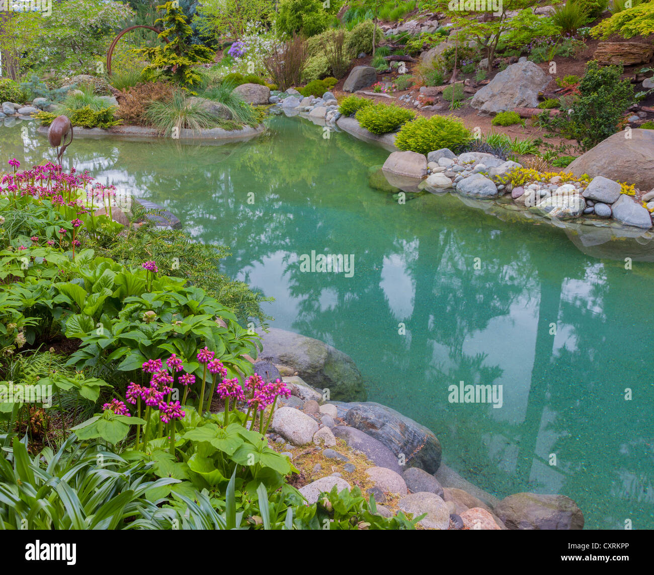 Vashon-Maury Island, WA: Salt water plunge pool surrounded by woodland perennial garden - Stock Image