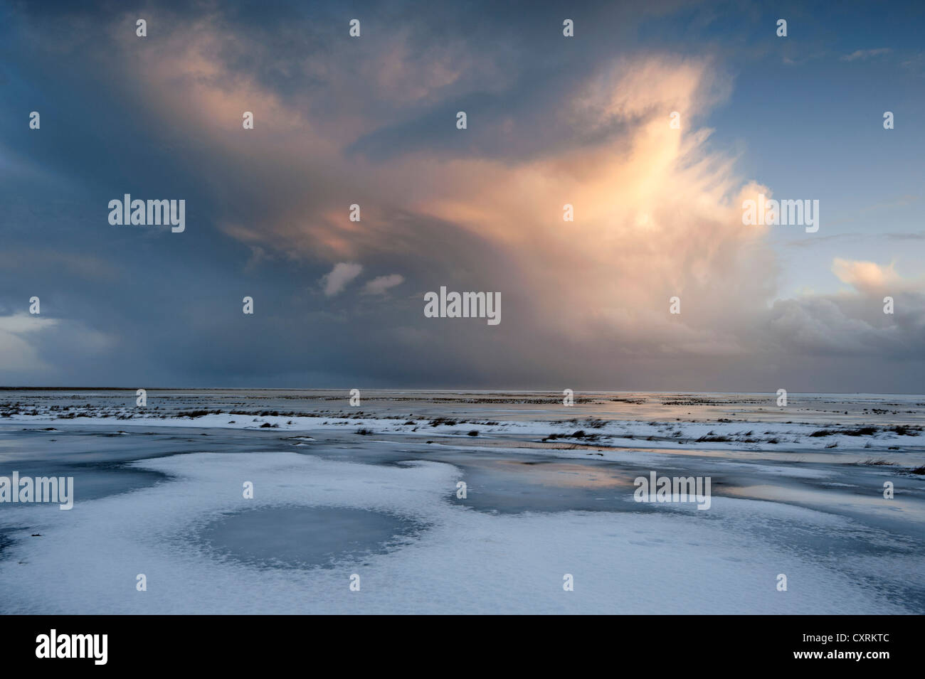 Cumulonimbus cloud over the snow-covered coastal landscape at dusk, South Iceland, Iceland, Europe, - Stock Image