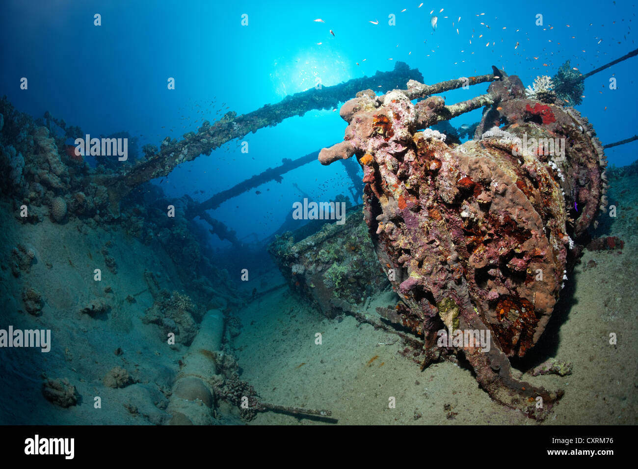 Superstructure, winch, shipwreck, tanker, S.S. Turbo, build 1912, sank on 4/4/1942 during World War II, hit by Italian - Stock Image