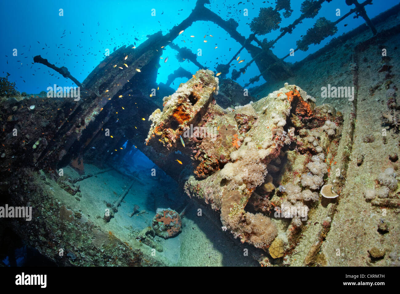 Side passage, winch, rail, shipwreck, tanker, S.S. Turbo, build 1912, sank on 4/4/1942 during World War II - Stock Image