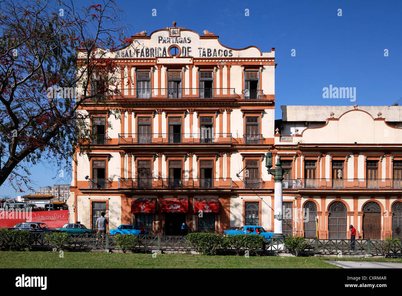 Oldest and most famous cigar factory of Havana, Real Fabrica de Tabacos Partagas, classic cars, Calle Industria - Stock Image