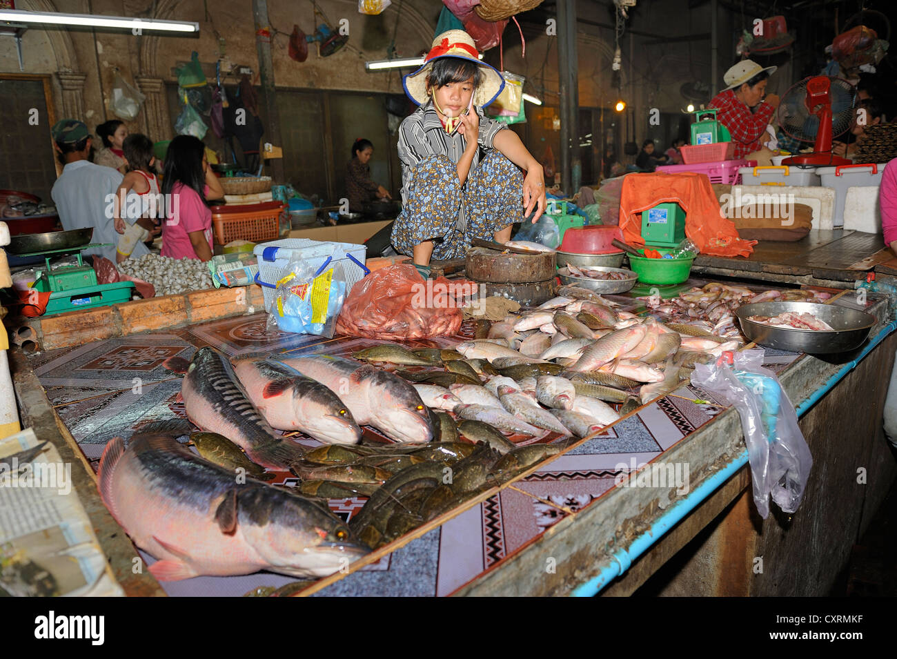 Fishmonger sitting among her fish, Old Market in Siem Reap, Cambodia, Southeast Asia, Asia - Stock Image