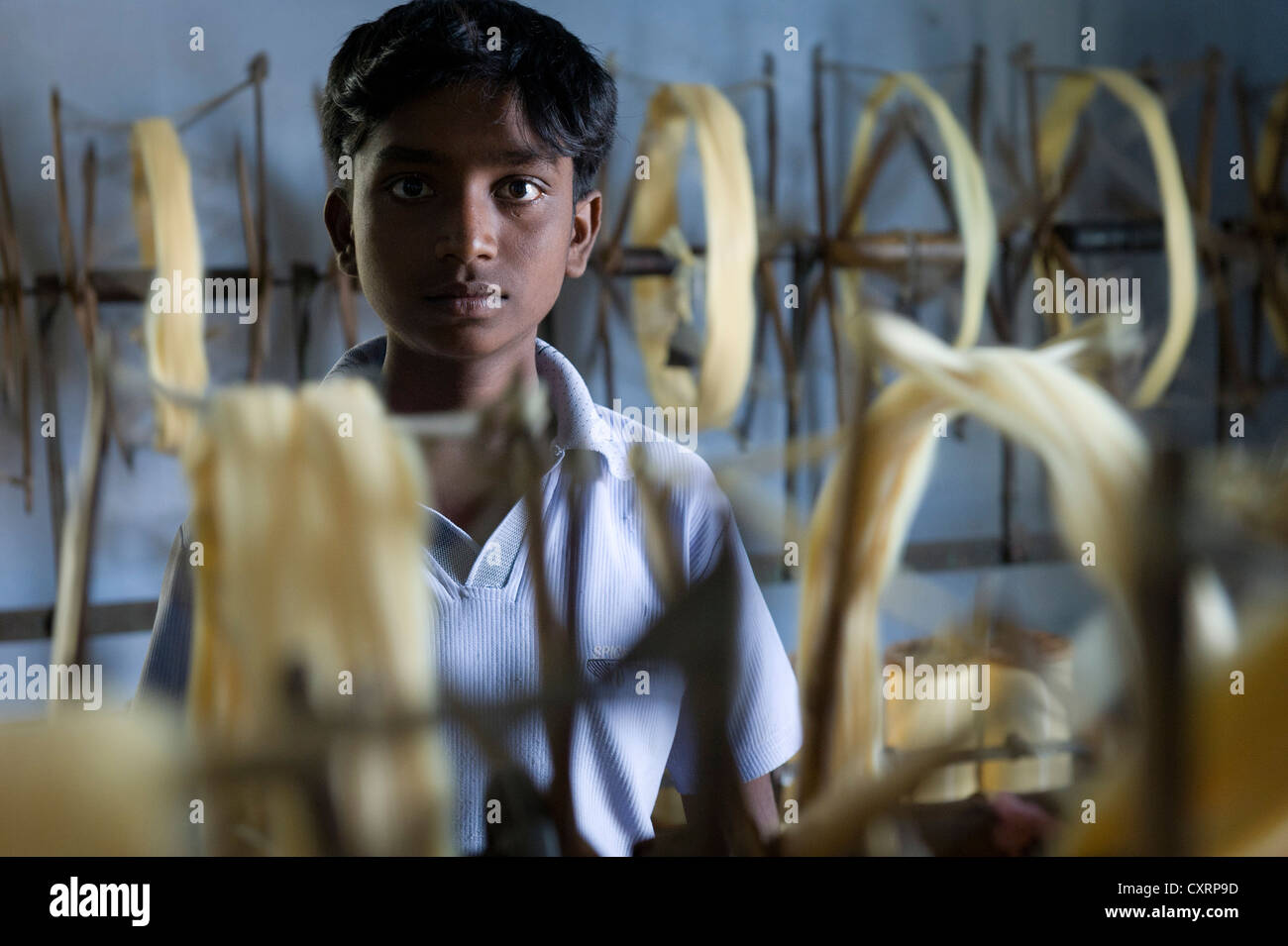 Child labourer working in a mosquito net factory, Karur, South India, India, Asia - Stock Image