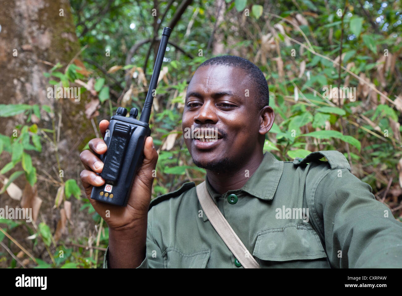 Park Ranger in the rainforest of Mahale Mountains National Park, Tanzania, East Africa, Africa - Stock Image
