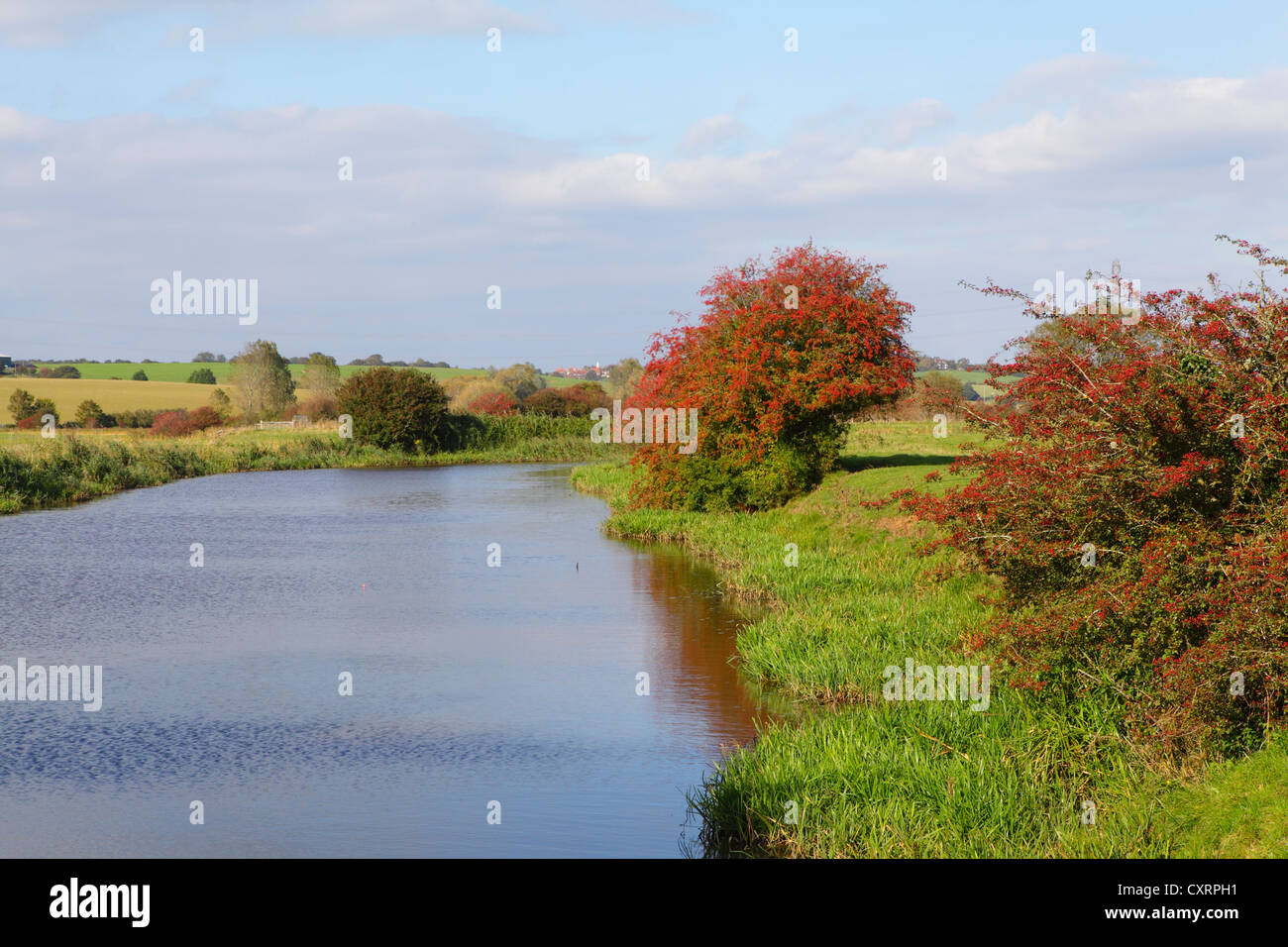 Autumn river scene East Sussex England UK GB - Stock Image