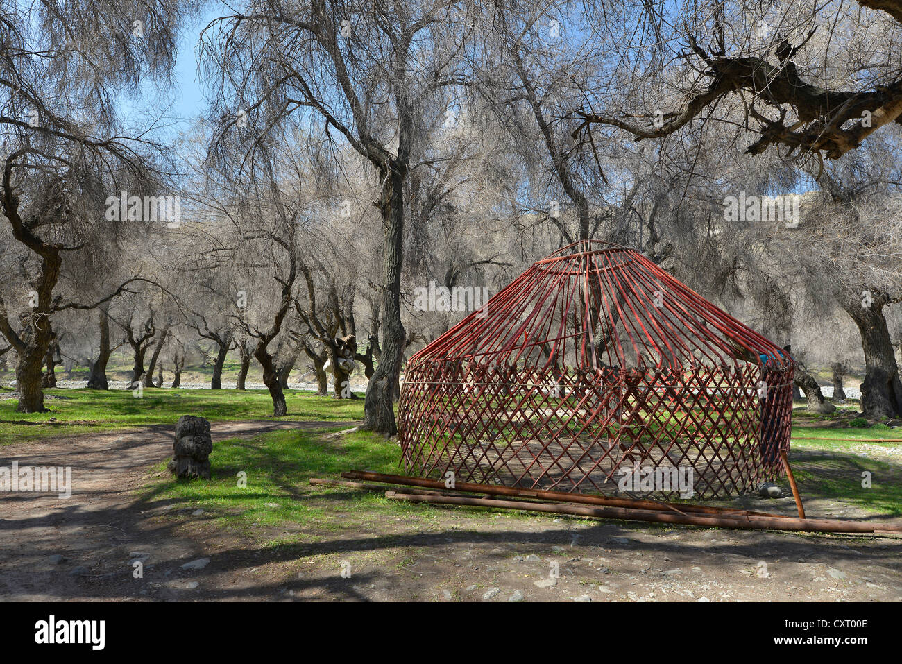 Yurt building in a wooded area, tourist camp of the Kazakh minority, Heaven Lake, Tian Chi, Tian Shan, Tien Shan, - Stock Image