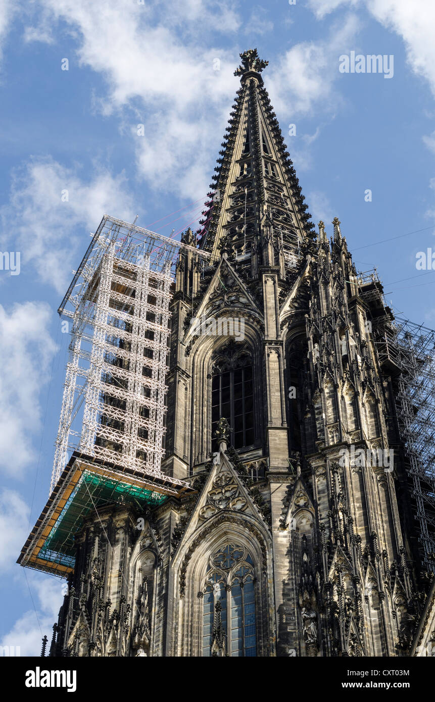 Suspended scaffolding for renovation work on the nearly 158 meters high north tower of Cologne Cathedral, Cologne Stock Photo