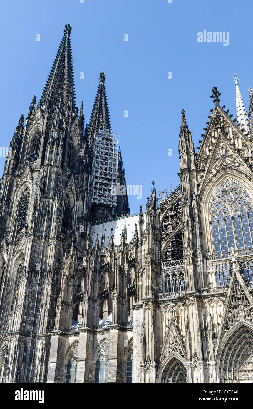 Cologne Cathedral with suspended scaffolding for renovations, Cologne, North Rhine-Westphalia, Germany, Europe - Stock Image
