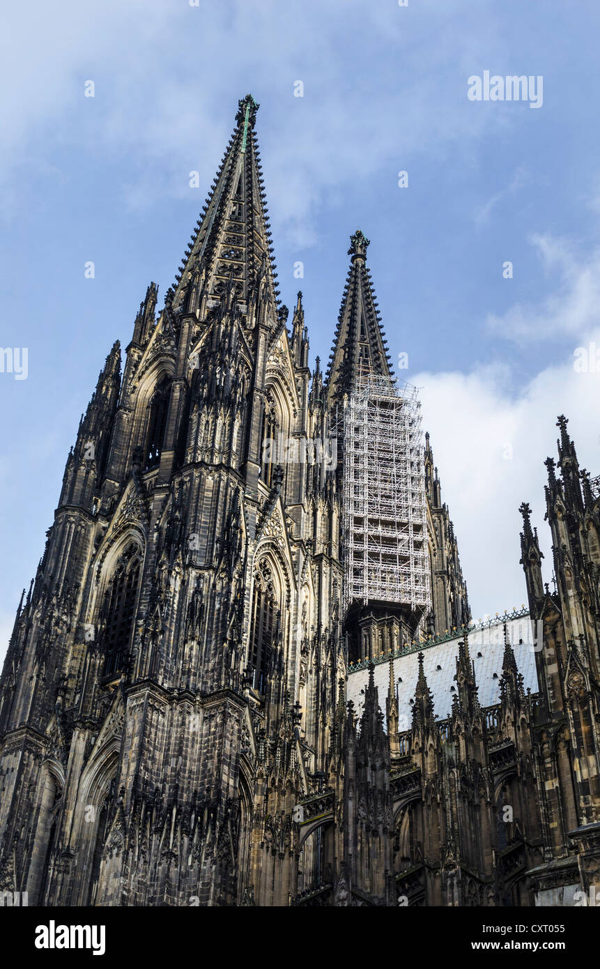 The nearly 158 meter high twin towers of Cologne Cathedral with suspended scaffolding for renovations, Cologne - Stock Image