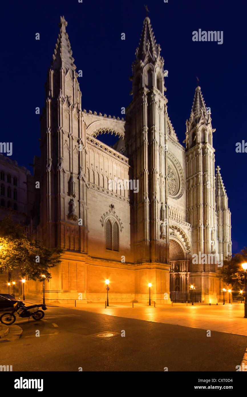 La Seu Cathedral, Parc de la Mar, old town, Ciutat Antiga, Palma de Mallorca, Majorca, Balearic Islands, Spain, - Stock Image