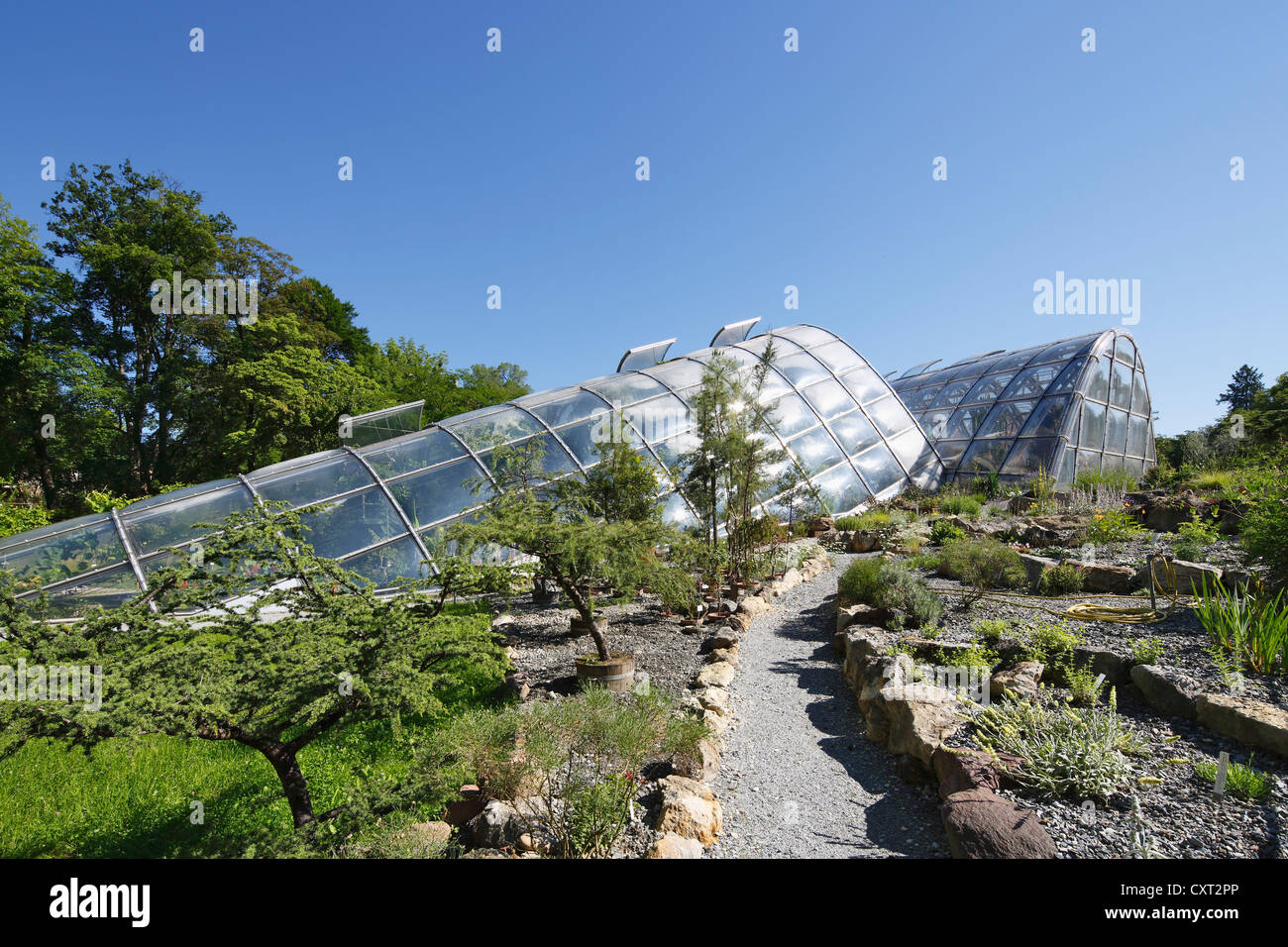 New greenhouses at the Botanical Garden of the university, Graz, Styria, Austria, Europe - Stock Image