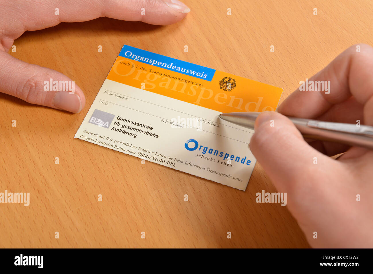 Young woman filling out a German organ donor card - Stock Image
