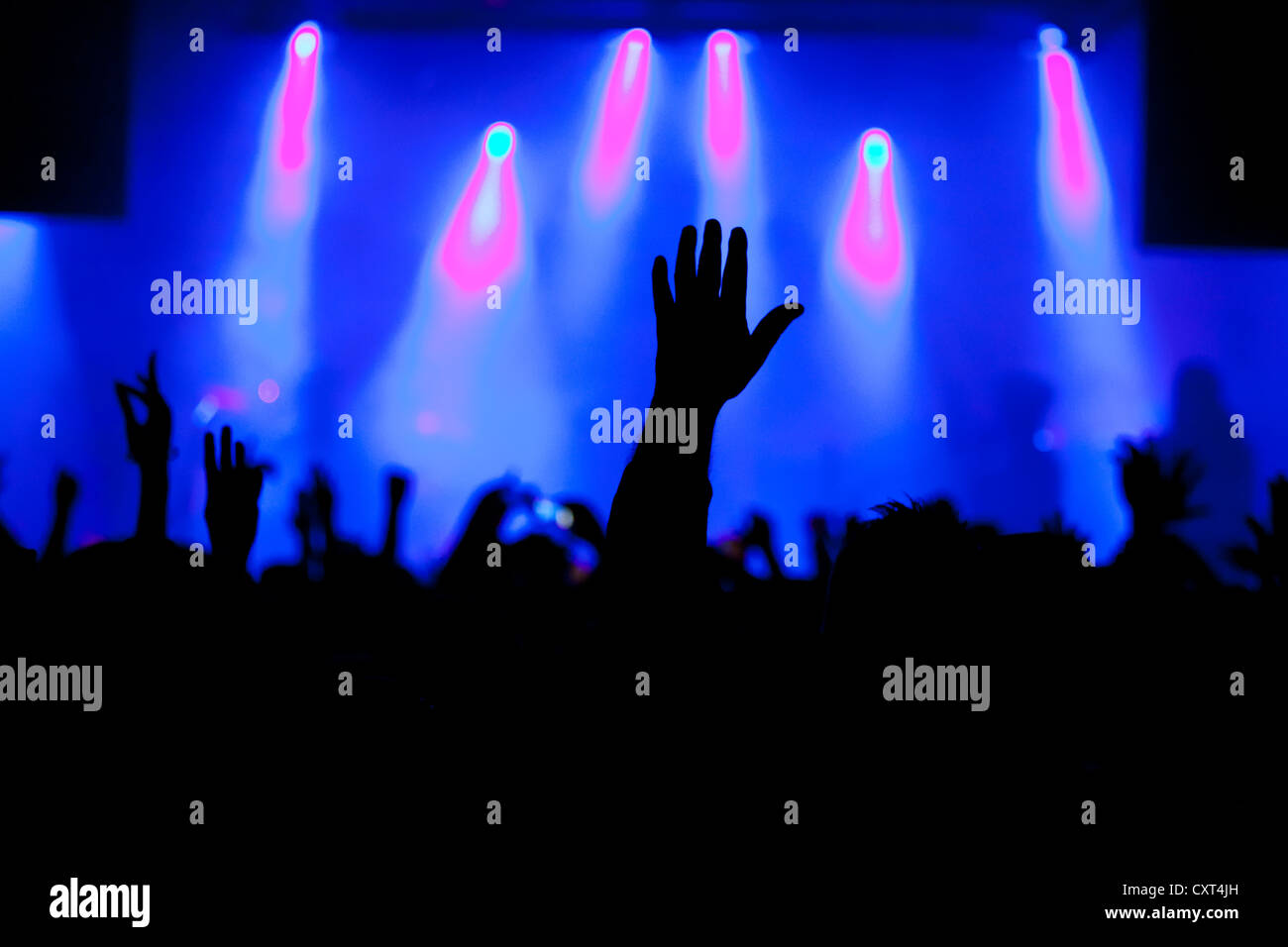 Crowd of spectators, hand of a man at a live concert - Stock Image