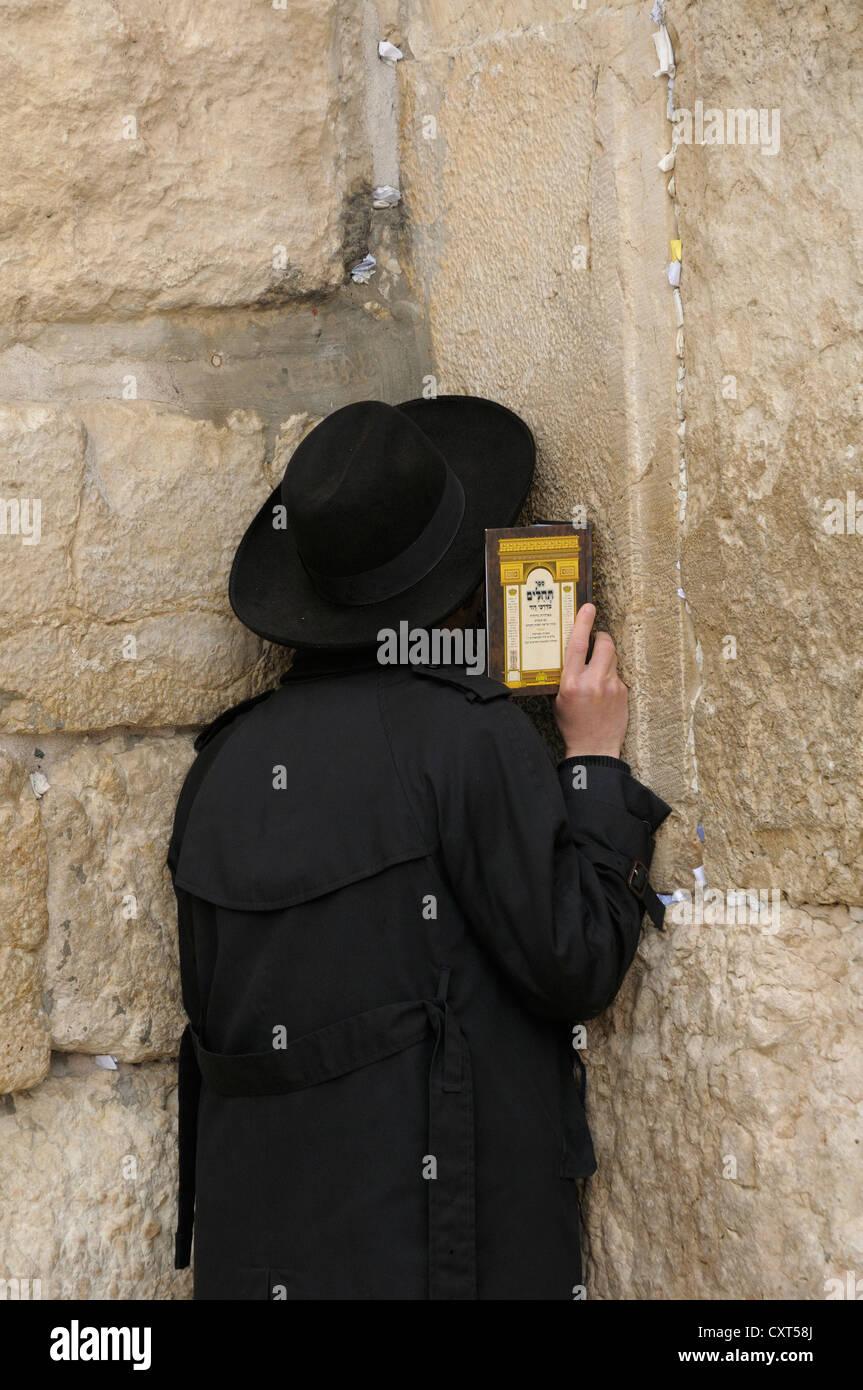 Orthodox Jew praying, Western Wall or Wailing Wall, Jerusalem, Israel, Middle East - Stock Image