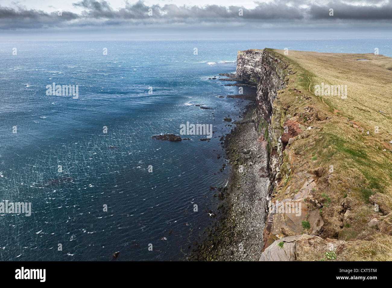 Cliffs and sea on the coast of Látrabjarg, Lautrabag, famous bird rocks at Cape Bjargtangar, the westernmost - Stock Image